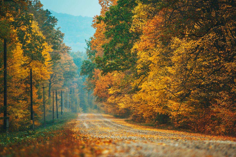 moldavian nature